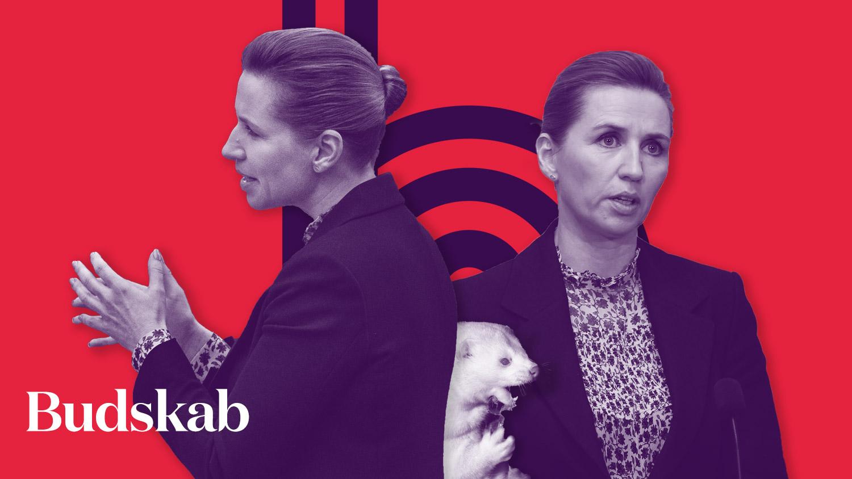 Podcast: Følelsesladet kommunikation styrker minkavlerne